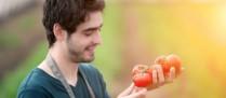 Aide à l'installation des jeunes agriculteurs